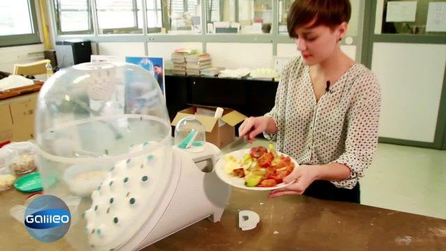 Insektenfarm für die Küche