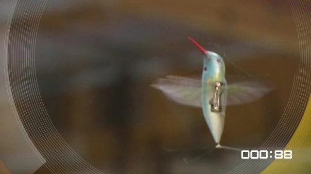 100 Sekunden: Drohnen
