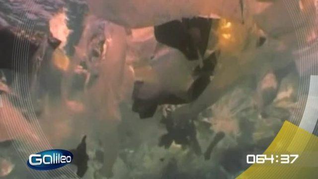 100 Sekunden: Plastik im Meer