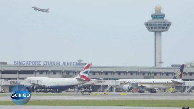 Bester Airport 2014