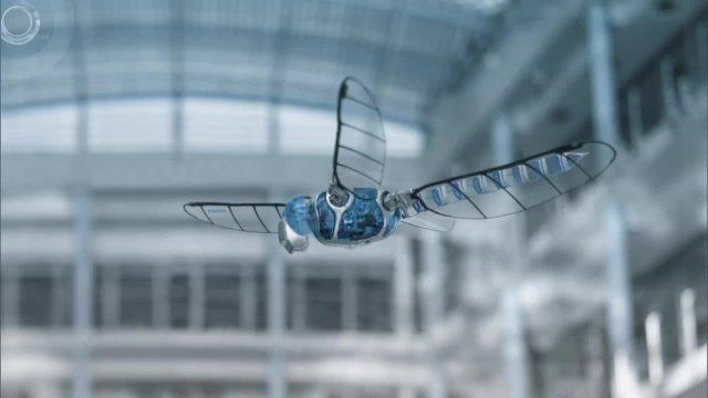 Bild Geschichte - Roboterlibelle