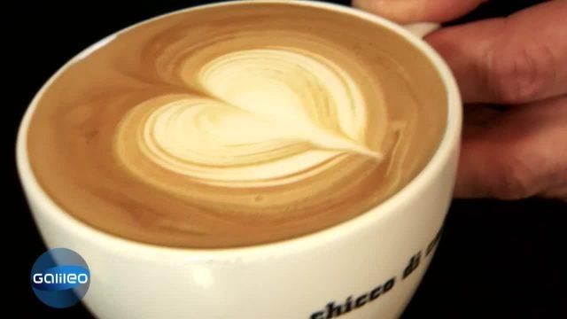 Checker Wissen - Latte Art