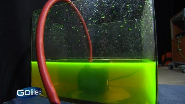 Fake Check: Wassertropfen