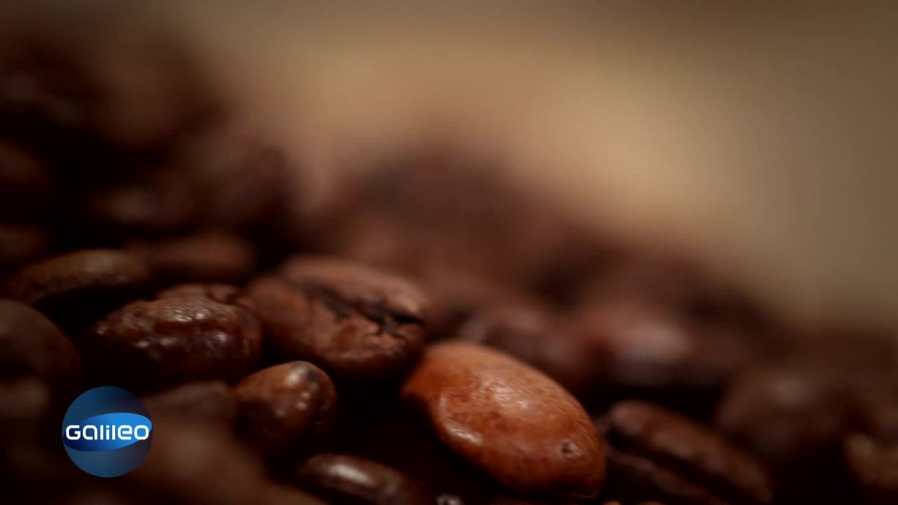 Glückliche Zufälle: Ziegen - Kaffee
