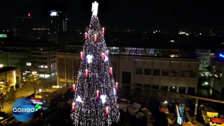 Größter Tannenbaum Deutschlands.Größter Weihnachtsbaum Der Welt