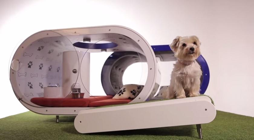 Diese Designer Hundehutte Kostet 30 000 Dollar