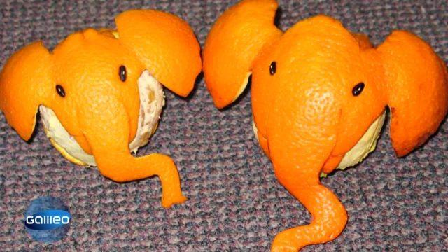 Orangen Origami