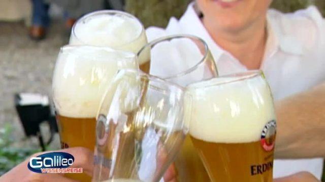 Ort der Woche: Biergarten