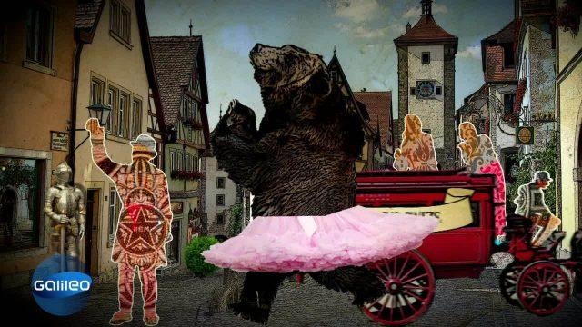 Schlaumeier: Da steppt der Bär