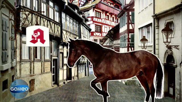 Schlaumeier: Pferd vor der Apotheke kotzen sehen