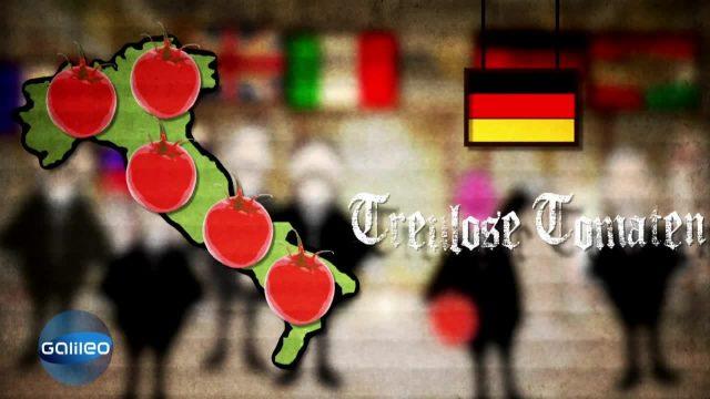 Schlaumeier - Treulose Tomate