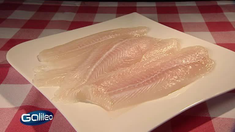 Top Sommer-Fischgerichte