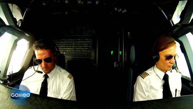 Traumjobcheck Pilot