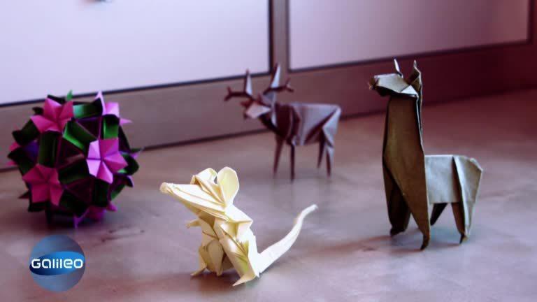 extrem origami