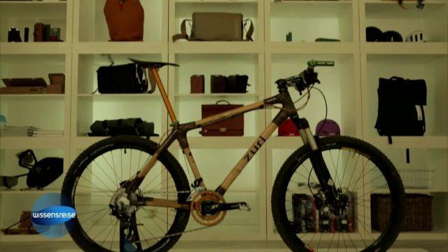 Fahrradtrend Bambusbike
