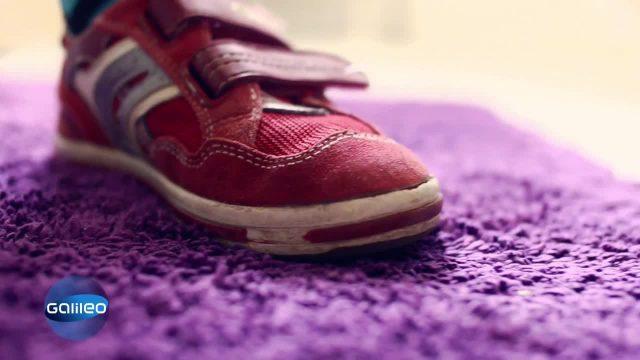 Hygiene-Test Teppichboden
