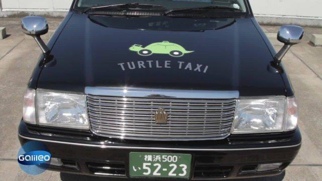 Schildkröten-Taxis und Co: So verrückt ist Japan