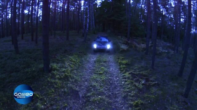 Verschollen im Wald