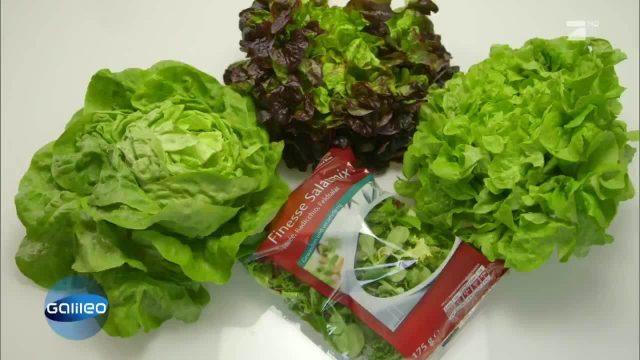 Wie frisch ist abgepackter Salat?