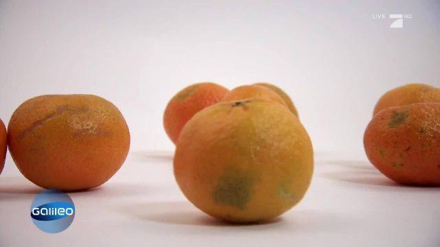 Weg der Clementine