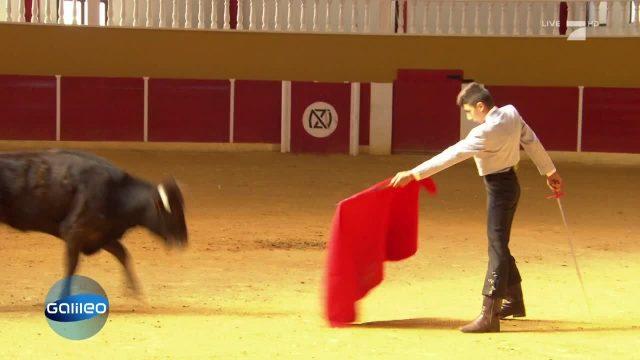 Dieser 14-Jährige möchte Stierkämpfer werden