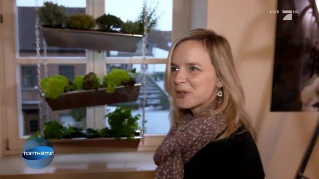 Neuer Trend: Vertikale Gärten