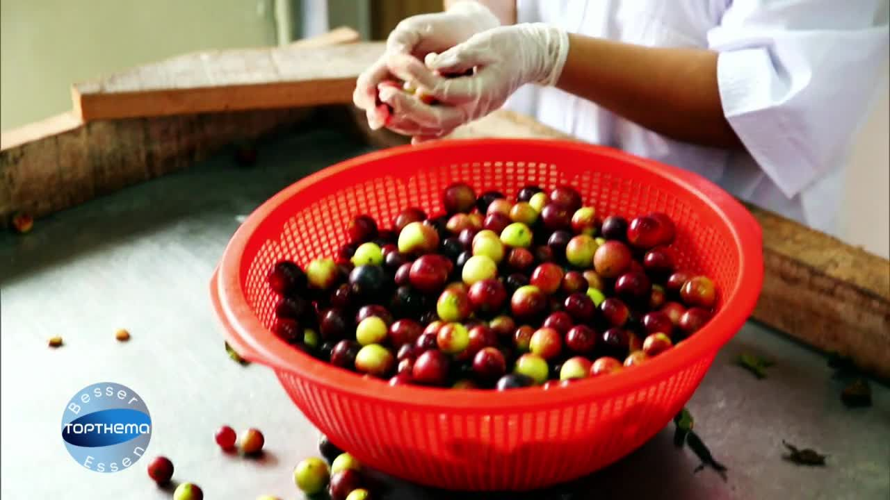 Vitaminreiche Superfrucht: Die Camu-Camu