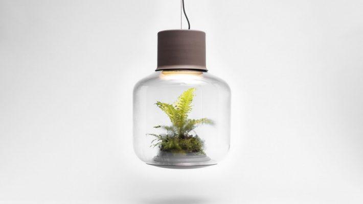 diese pflanzenleuchten liefern gr nes licht. Black Bedroom Furniture Sets. Home Design Ideas