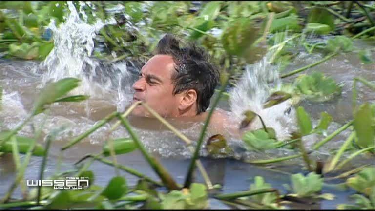 Amazonas schwimmen