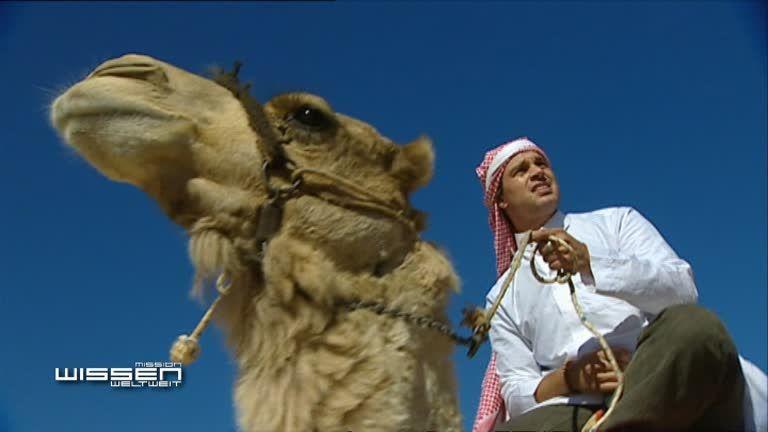 In der Wüste mit Beduinen