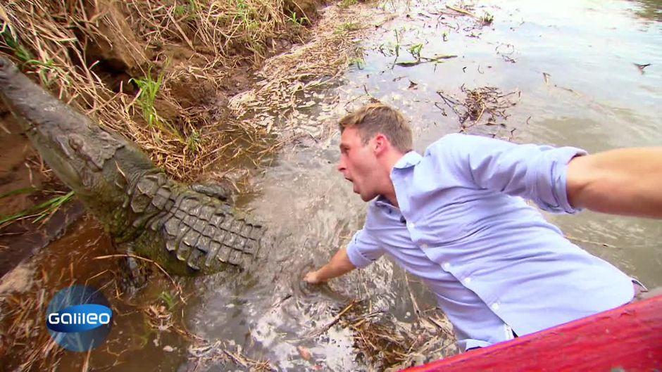 Mutprobe: Auf einem Krokodil reiten