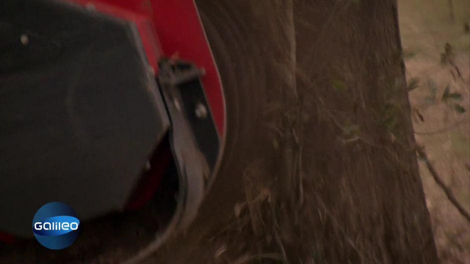 Weg-frei-Maschine 1: Baumschredder-Maschine