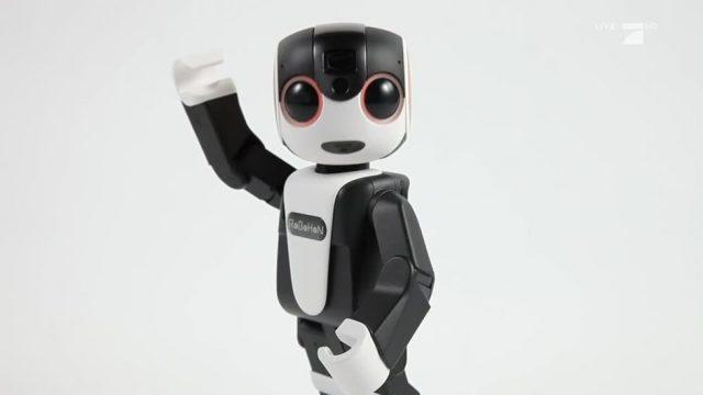 Der Smartphone-Roboter im Check