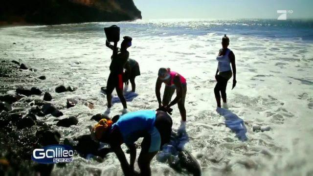 Stranddiebe: Der Kampf um den Sand