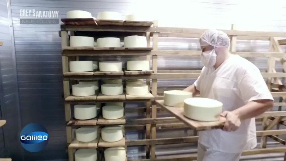 Parmesan made in Russia