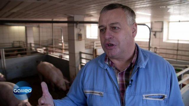 Was versprechen die neuen Qualitätssiegel auf Fleischprodukten?