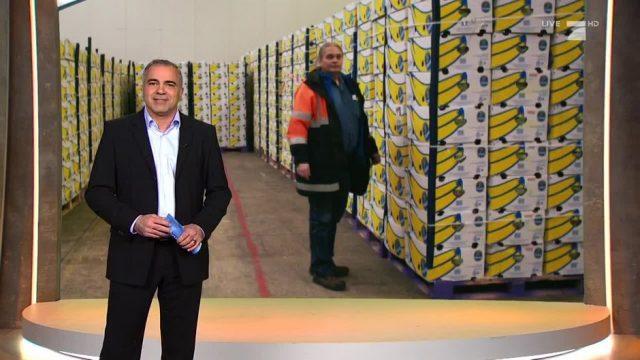 Montag: Der Bananenschnüffler von Bremerhaven