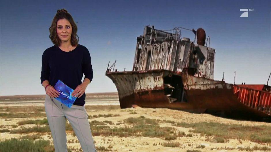 Rettung des Aralsees: ... Taylor Swift Songs