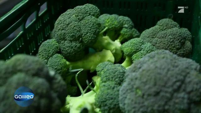 Brokkoli: Der Superheld unter den Gemüsesorten