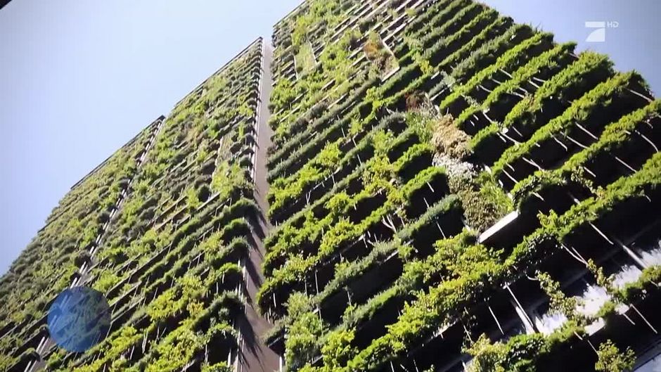 urban gardening mal anders der vertikale hochhausgarten. Black Bedroom Furniture Sets. Home Design Ideas