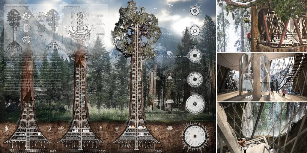 Was Machen Architekten häuser in bäumen koreanische architekten machen es möglich