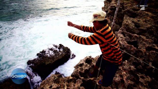 Das gefährliche Leben der indonesischen Langustenfänger