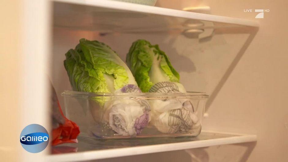 kitchen hack so bleiben salat und wurst l nger frisch. Black Bedroom Furniture Sets. Home Design Ideas