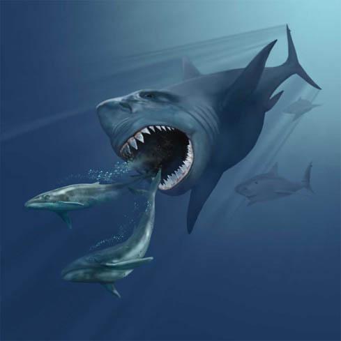 Urzeit Hai