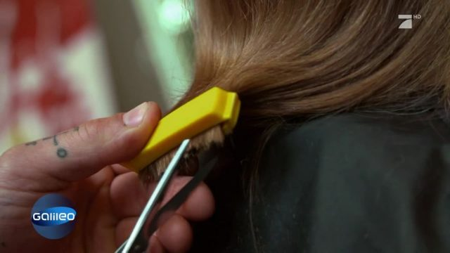 Eine Bob-Frisur mit einem Tütenclip schneiden?