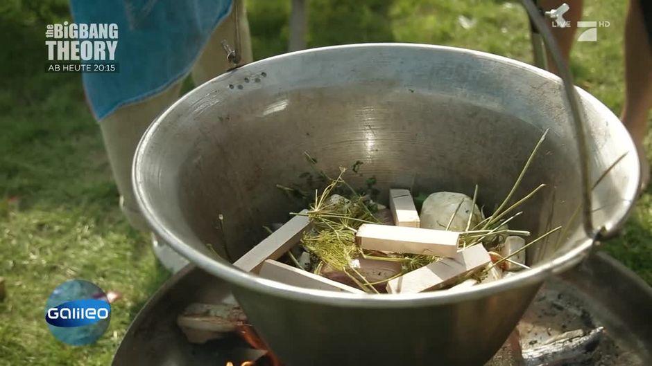 Wood-Food: Was steckt dahinter?