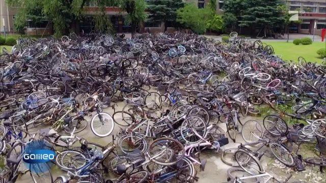 Das steckt hinter den chinesischen Fahrrad-Friedhöfen