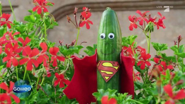 Die vielen Superkräfte der Gurke