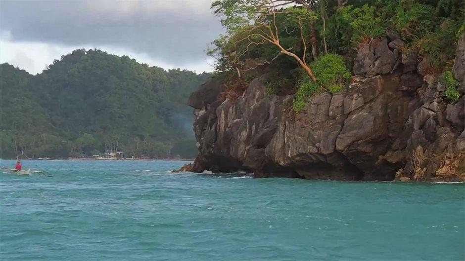 Fast 10 Meter lang: Dieses mysteriöse See-Ungeheuer wurde an Land gespült!