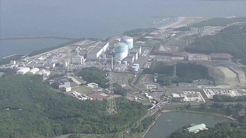 6 Jahre nach Fukushima machen Forscher eine beunruhigende Entdeckung